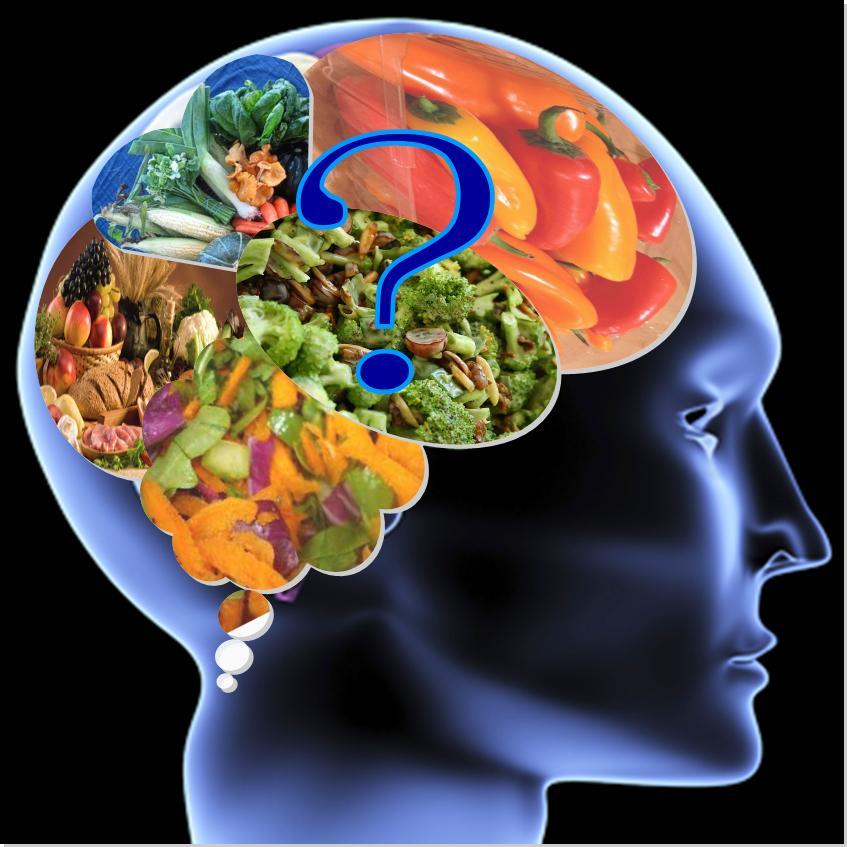 """Résultat de recherche d'images pour """"brain foods"""""""