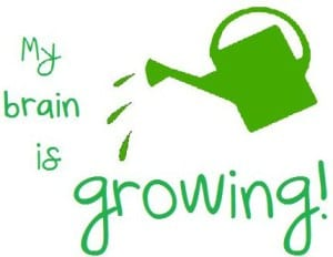 Growing brain