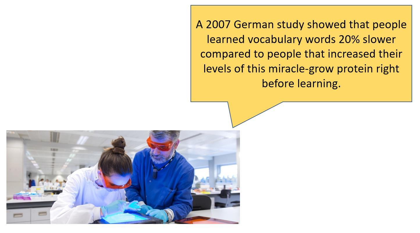german study